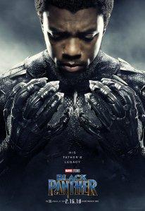 T'Challa Chadwick Boseman Black Panther